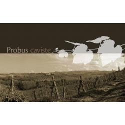 CAVE PROBUS 5à10%